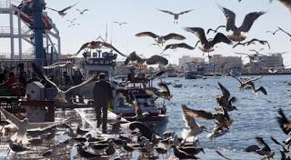 La Junta inscribe el paisaje pesquero de Isla Cristina en el Registro de Interés Cultural de Andalucía
