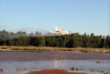 Arranca el Plan de Control de Mosquitos sobre 140.000 hectáreas de 12 municipios