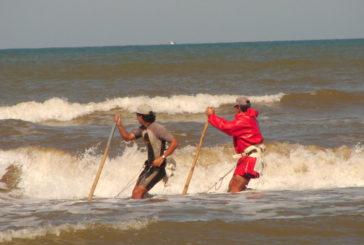 Nuevas licencias para el marisqueo a pie en Huelva y Cádiz