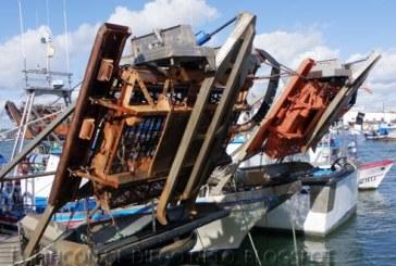 Ayudas a las empresas armadoras afectadas por la inactividad temporal de la flota de draga hidráulica del Golfo de Cádiz