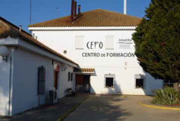 El Delegado Territorial de Empleo clausura mañana el Taller de Empleo Quercus en el CEFO de Islantilla