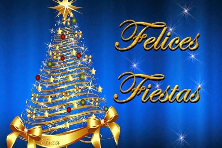 Felices Fiestas de Navidad