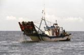 La Junta da luz verde a un plan de gestión de la chirla en el Golfo de Cádiz