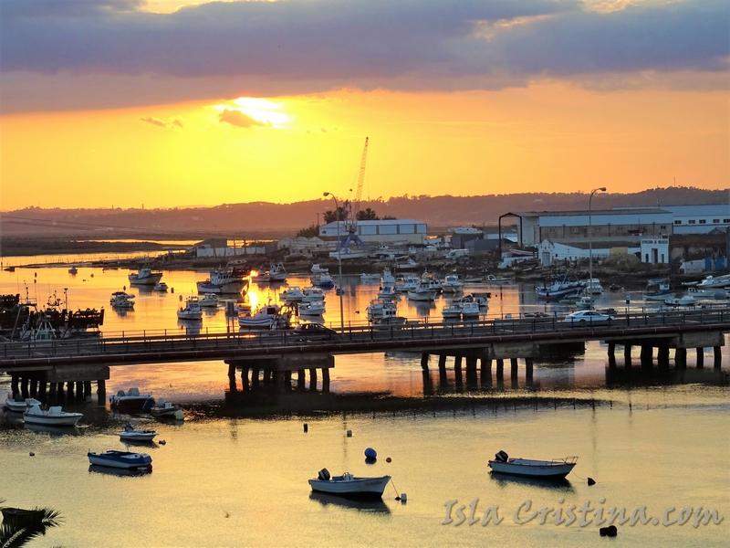 d94ad593d La Consejería de Fomento y Vivienda, a través de la Agencia Pública de  Puertos de Andalucía (APPA), ha sacado a la venta directa 36 embarcaciones  en puertos ...