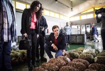 """Rivera recuerda en su visita a Isla Cristina que """"con la estelada no se come"""""""