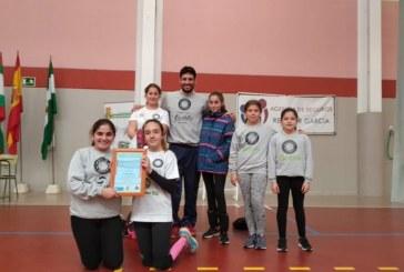 Jornada muy positiva para los equipos del Club Voleibol Isla Cristina