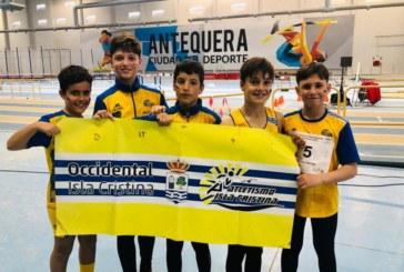 Los Alevines traen 8 medallas del Campeonato de Andalucía Zonal Occidental de Invierno