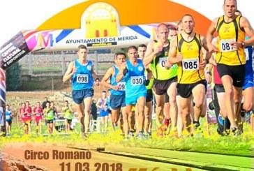 Huelva con 7 magníficos corredores al Nacional Individual y por Federaciones