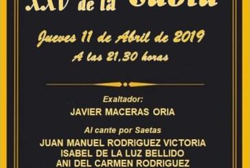 XXV Exaltación a la Saeta en la Peña Flamenca La Higuerita