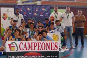 El Ciudad de Huelva campeón en Isla Cristina del provincial junior masculino