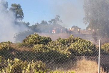 Controlado un Incendio en el pinar de Pozo del Camino