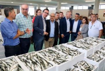 """El PP asegura que el nuevo Gobierno andaluz es una """"administración amiga"""" que """"da esperanzas al sector pesquero"""""""
