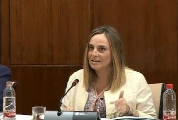 Marifrán Carazo anuncia, la instalación de pantalanes para el sistema de defensas y escalas en Isla Cristina