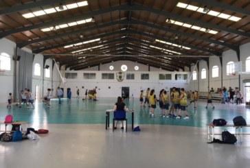 Diputación convoca el programa La Provincia en Juego para fomentar la práctica del deporte en edad escolar