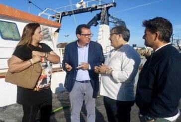 PP destaca el compromiso de la Junta para iniciar las depuradoras de moluscos