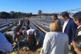 El PSOE se compromete con la sostenibilidad e innovación en el sector hortofrutícola
