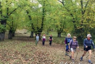 Fam Trip para promocionar el Nordic Walking entre los británicos