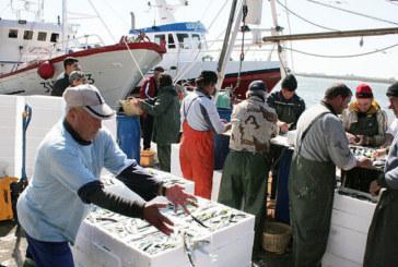 Aplazada en Isla Cristina la reunión del sector del cerco sobre la sardina ibérica
