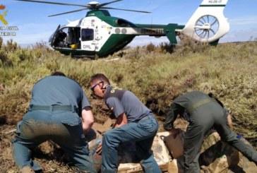 1.280 kilos de 'coca' desencadena una masiva operación antidroga