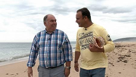 Agenda Diaria con los Actos Culturales Virtuales, en Radio Isla Cristina
