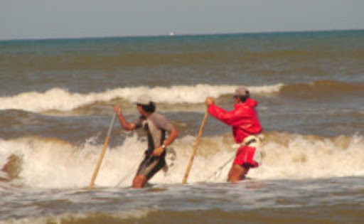 Los mariscadores isleños volverán a faenar la coquina