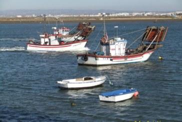 Andalucía convoca ayudas al sector pesquero por más de 1,77 millones de euros