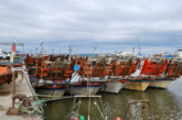 900.000 euros en ayudas por la parada temporal para la flota de la chirla