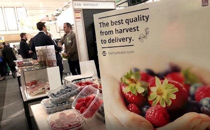 Huelva se sitúa como la provincia líder de exportaciones de frutos rojos
