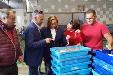 PSOE de Huelva destaca que las ayudas de 30 millones de euros a la pesca «alivian los temores de armadores y pescadores»