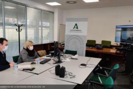 Salud se reúne por videoconferencia con los alcaldes de la Provincia ante la situación del Covid