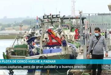 La flota de cerco isleña del Golfo de Cádiz vuelve a faenar