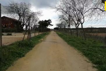 Paseo por la Vía verde y Laguna del Prado -La Redondela
