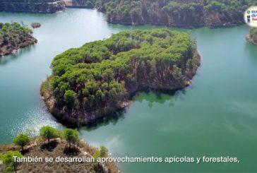 Campaña 'Y tú ¿qué haces por el Medio Ambiente?