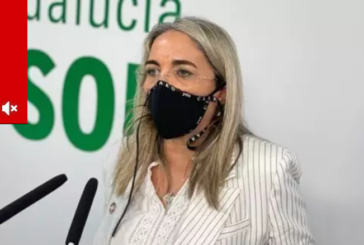 El PSOE de Huelva reclama a la Junta ayudas directas a los negocios de la Costa