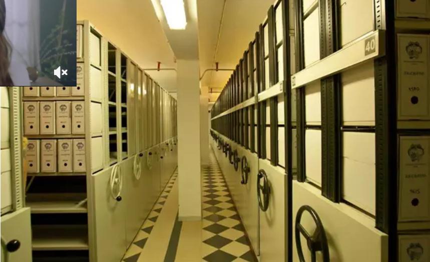 La Diputación de Huelva destaca la «imprescindible» labor del Archivo para el resguardo de la memoria histórica