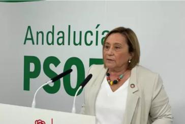 El PSOE de Huelva apela a la igualdad