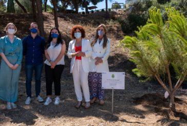 Diputación participa en la campaña #UnÁrbolPorEuropa con la plantación de un árbol en nombre de la provincia de Huelva