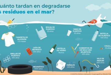 El sorprendente hallazgo en Isla Cristina que es todo un aviso 'catastrófico'