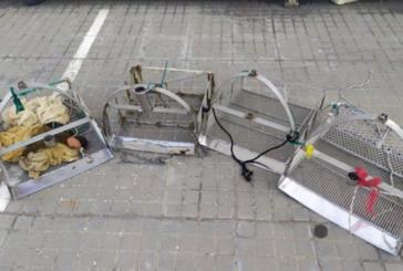 La Junta incauta en lo que va de año 42 rastros manuales dedicados a captura ilegal de coquinas