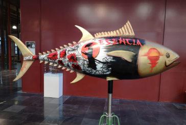 Isla Cristina: Exposición